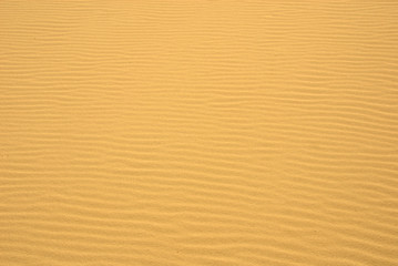 Golden Sand Ripples