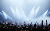 Fans und Scheinwerfer - 8216433