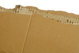 Cardboard rip poster