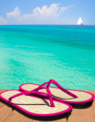 Pink Sandals on Dock