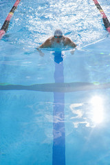 Male swimmer training in swimming pool, elevated view (lens flare)