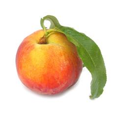 Nectarine peach with leaf