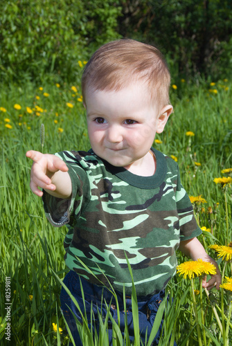 Little child collects  Dandelions