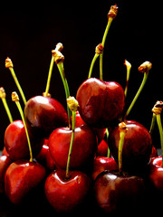 Red cherries - close up on black background