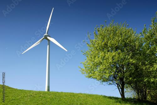 Windrad mit Baum