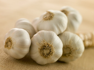 Bulbs of Garlic