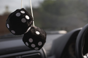 Furry dice hanging in car