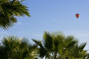 Balloon Over Palms