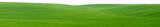 Green field panorama cutout poster