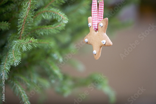 A Christmas decoration hanging on a tree