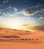 Caravan in desert poster