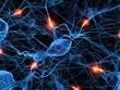 Leinwanddruck Bild - aktive nervenzelle
