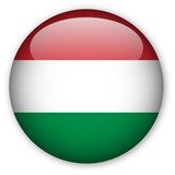 Hungarian flag button poster