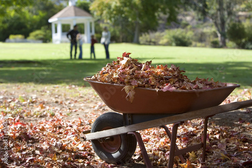 Family standing in garden, focus on wheelbarrow full of autumn leaves in foreground, side view