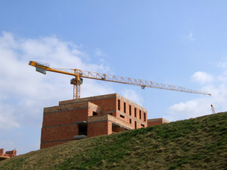 Building and elevating crane
