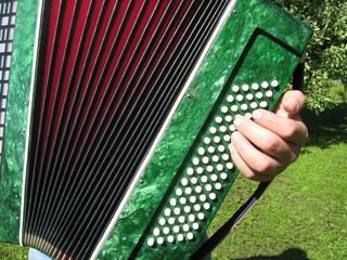 Playing the accordion in the garden, details close up