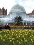 Palm House, Botanic Garden, Belfast poster