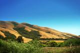 Hills near San Francisco poster