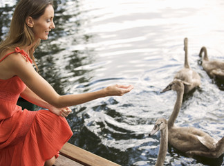 Young woman feeding swans