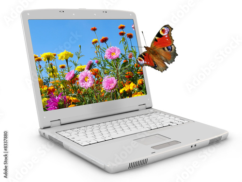 White notebook, flowerses and butterfly