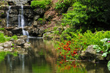 Fototapety Cascading waterfall and pond