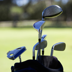 Close-up of golf clubs in a bag