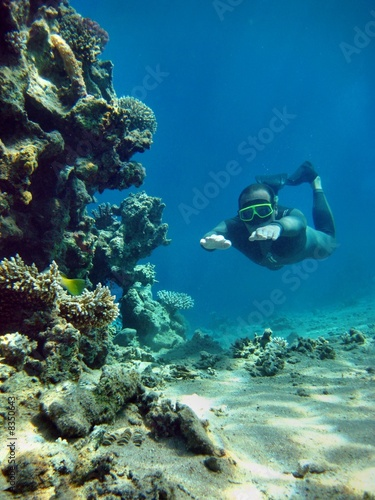 Freediving in the red sea - 8350643