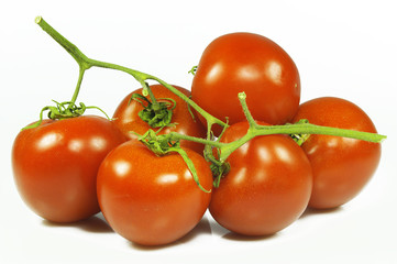 Pomodori Ramati 2