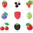 Icon set Berries