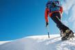 Mountain climber - 8364687