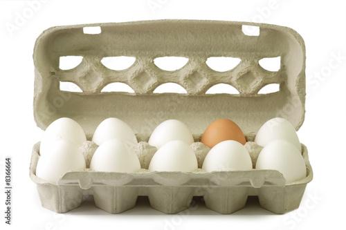 Leinwandbild Motiv Eier im Pappkarton
