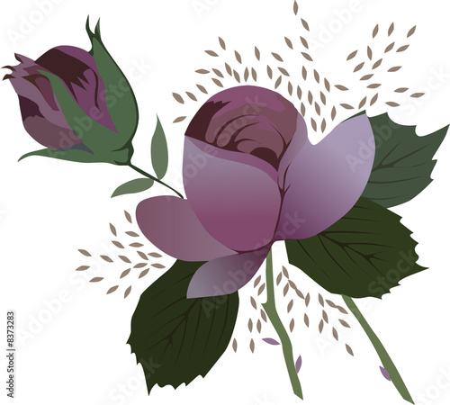 illustration with dark red roses