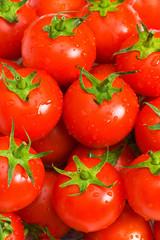 Wet whole tomatos arranged at the market