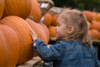 Cute little girl with pumpkins at Halloween farmer's market