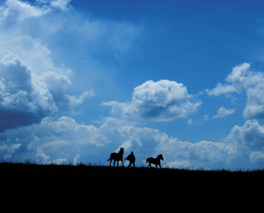 Runaway horses and farmer on big clouds background