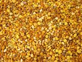 Pollen granules poster