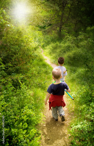 young children walking in forest