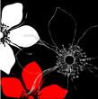 Vector Illustration Blütenhintergrund Blume auf schwarz