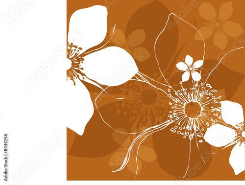 Vektor Blüten Design mit weißen Blumen auf braun