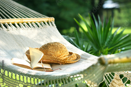 Hammock, book, hat, and glasses on a sunny day - 8464481