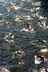 sport - natation 06