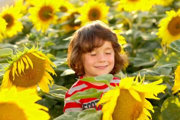 Bub zwischen Sonnenblumen Augen zu