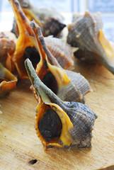 Garusoli o chiocciole di mare