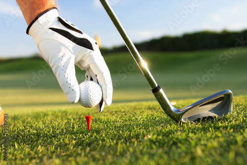 golf tee - 8489083