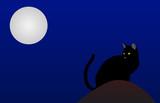 Gato negro de noche poster