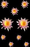 patchwork floral poster