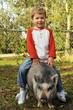 A True Piggy-Back Ride