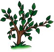Deciduous Tree - detailed cartoon illustration