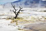 Improbably fantastic landscape poster