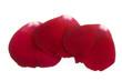 three red rose petals